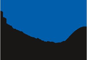 Neue Universitätsstiftung Freiburg Logo